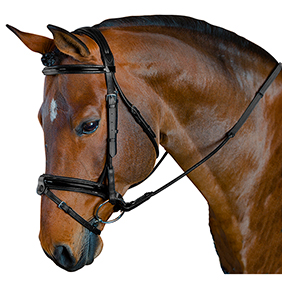 MTL Platinum PERFORMANCE Dressage Bridle